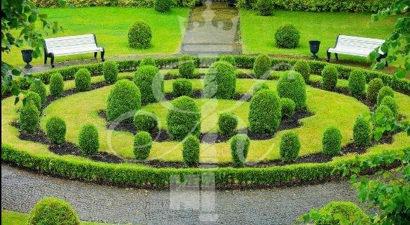 Отель «Шлосс» сад